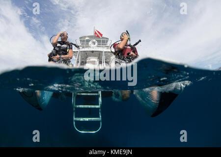Les plongeurs se retrouvent dans l'eau faisant pas de géant.