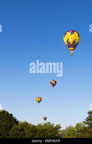 Colorful ballons à air chaud monte et s'envoler au-dessus de la cime des arbres Banque D'Images