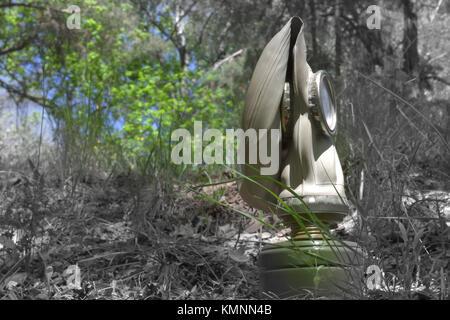 Masque à gaz de l'armée dans les bois. Photo incolore partiellement Banque D'Images