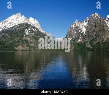 Teewinot Mountain et canyon Cascade de Jenny Lake. Parc National de Grand Teton. Le Wyoming. USA