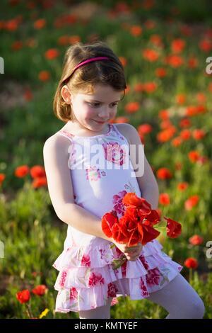 Petite fille dans un champ de coquelicots holding a bouquet