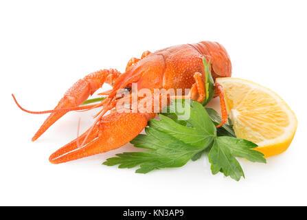 La langouste et le citron isolé sur un fond blanc. Banque D'Images