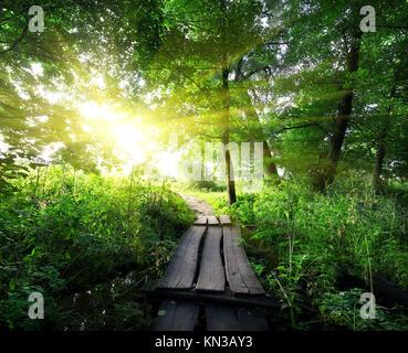 Le lever du soleil sur un pont de bois dans la forêt. Banque D'Images