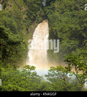 Trafalgar Falls dans un environnement de jungle verte avec des fougères arborescentes après une forte pluie Banque D'Images