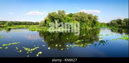 Petite île sur une belle rivière en été. Banque D'Images