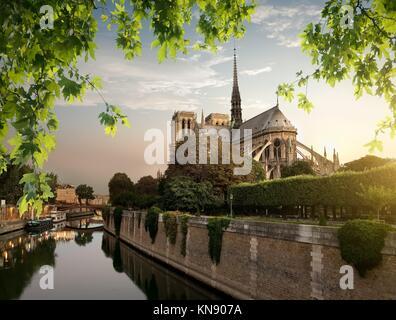 Notre Dame et parc sur la Seine à Paris, France. Banque D'Images