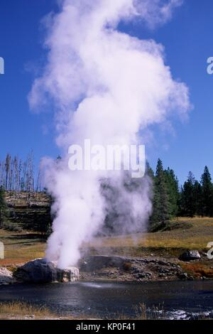Riverside geyser, le Parc National de Yellowstone, Wyoming.