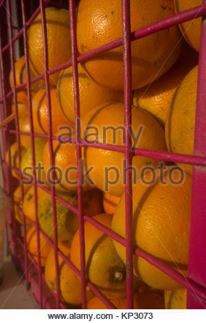 L'Europe, la Grèce, l'île de Rhodes, vue d'Oranges en vente au marché de l'alimentation en plein air Banque D'Images