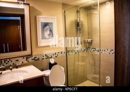 Belle grande salle de bains de luxe avec douche vue ouverte à Fort Lauderdale en Floride. Banque D'Images