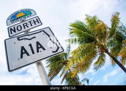 Vue du dessous de la route panoramique de la Floride et A1A autoroute Nord/signe de palmiers, à Fort Lauderdale Banque D'Images