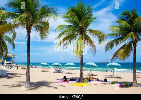 Vue sur les palmiers et l'océan, alignés sur la plage de Fort Lauderdale en Floride, USA Banque D'Images