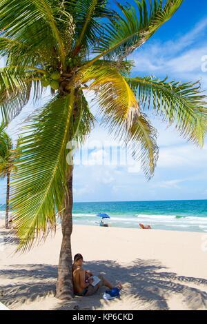 Vue rapprochée d'un palmier, sur la plage de Fort Lauderdale en Floride, USA, sur un beau ciel bleu et ensoleillé, Banque D'Images