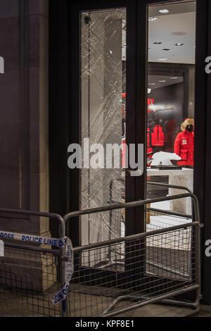 Une fenêtre s'est vu à havve été écrasé au Canada Goose