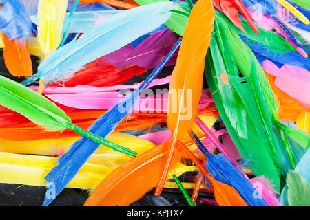 Plumes colorées d'oiseaux arc-en-ciel de plumes. Colombe d'oie perroquet canard quill feathres... Arrière-plan de Banque D'Images