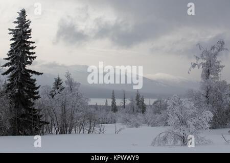 Paysage d'hiver en Zuratcul réserver, au sud de l'Oural, Russie Banque D'Images