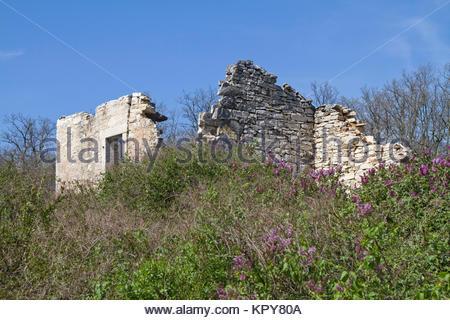 Chambre ruines en Istrie Banque D'Images