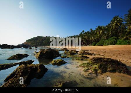 Cola beach, dans le sud de Goa en Inde dans un paysage ensoleillé Banque D'Images