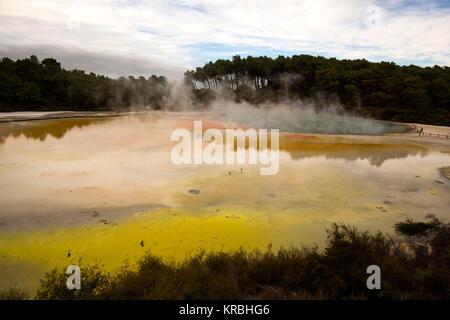"""Waiotapu (eaux """"sacré"""" en maori) est une zone géothermique actif à l'extrémité sud du centre volcanique Okataina, Banque D'Images"""