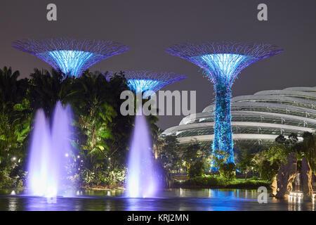 Dôme de fleurs avec des arbres artificiels géant dans la nuit dans les jardins de la Baie - Marina Bay Sands, Singapour Banque D'Images