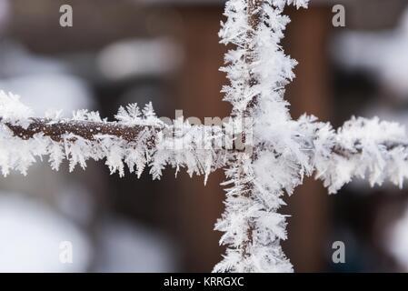 Rusty grillage recouvert de givre et de gel avec arrière-plan flou dans l'hiver Banque D'Images
