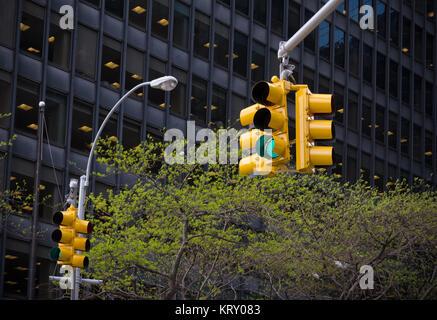 Feux de circulation à new york Banque D'Images