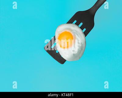 Sur l'oeuf d'une spatule Banque D'Images