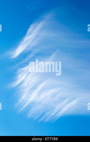 Cirrus Nuages dans le ciel bleu Banque D'Images