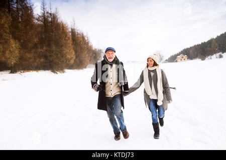 Happy senior couple walking in snow-covered landscape Banque D'Images