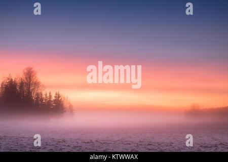 Brumeux et de soleil colorés avec paysage paisible à soirée d'hiver en Finlande Banque D'Images