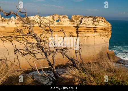 """Vue sur """"Le Razorback"""", une formation rocheuse calcaire près du Loch Ard Gorge, Port Campbell National Park, Victoria, Banque D'Images"""
