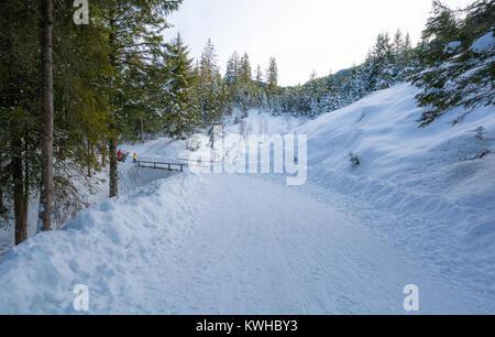 Paysage d'hiver majestueux avec des arbres couverts de neige. Banque D'Images