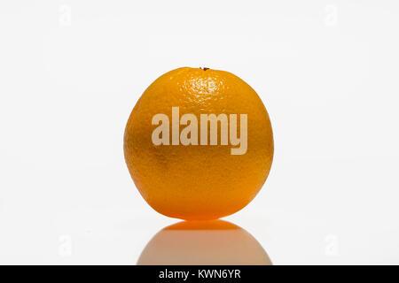 Orange, agrumes contre fond blanc Banque D'Images
