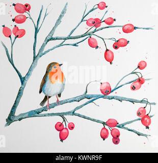 Peinture de Robin sur la branche de baies Banque D'Images