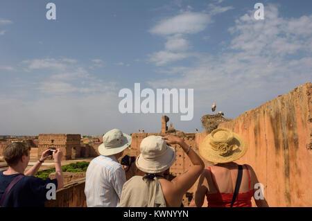 Les cigognes qui nichent dans les Palais El Badi, Marrakech, Maroc, Afrique du Nord Banque D'Images