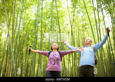 Senior Couple hiking et relaxant en vert forêt de bambou Banque D'Images