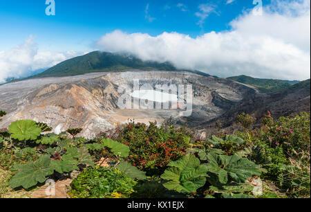 Lac de cratère avec Caldera, le volcan Poas, Parc National Volcan Poas, au Costa Rica