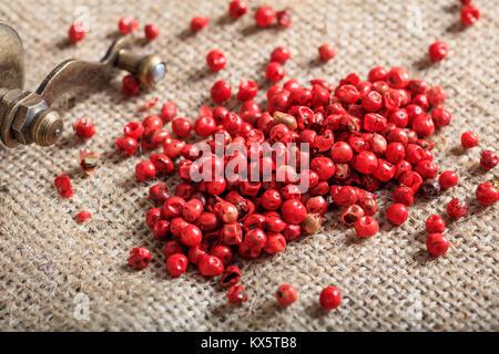 Poivron rouge séché sur de la toile de jute d'épices Banque D'Images