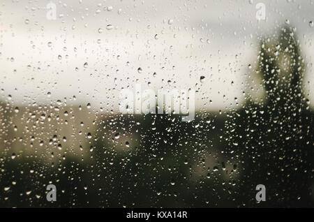Gouttes sur la fenêtre avec les arbres flous en arrière-plan. Saison des pluies. Banque D'Images