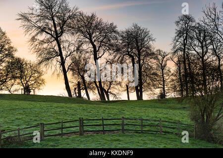 Regarder à travers les arbres nus à un ciel clair juste avant le lever du soleil en hiver dans la campagne britannique, Banque D'Images
