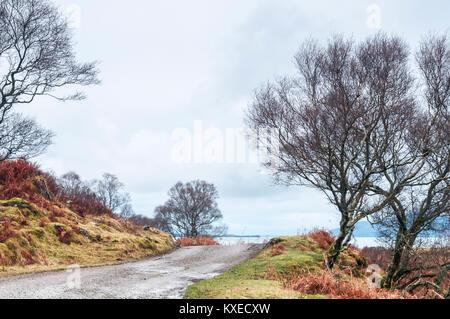 Les arbres, les rochers et sur route à voie unique dans Ardnamurch, Lochaber en Écosse. 25 décembre 2017. Banque D'Images