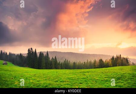 Superbe lever de soleil sur la vallée verte. Vallées de montagnes Tatra en matin d'été. Ciel pittoresque au-dessus Banque D'Images