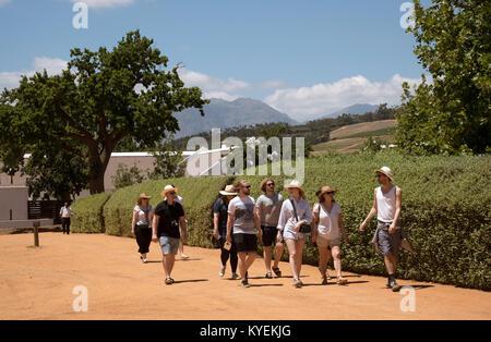 Paarl, Western Cape, Afrique du Sud. Décembre 2017. Les touristes sur un wine tour de Babylonstoren estate. Banque D'Images