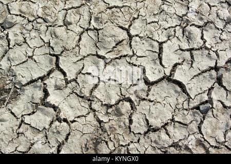 La terre commence à se fissurer en raison du manque de pluie. UK Banque D'Images