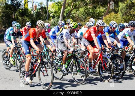 Adélaïde, Australie. 17 janvier, 2017. Le peloton peu après le début de la phase 2 du Tour Down Under cycliste à Banque D'Images
