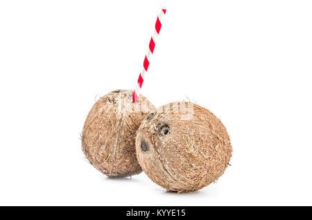 Coconut isolé sur un fond blanc dentelle Banque D'Images