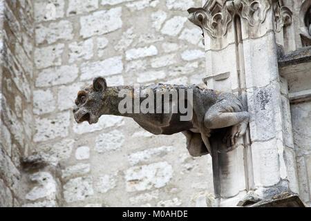 Gargoyle sur cathédrale Saint Louis de Blois, Loire Valley France Banque D'Images