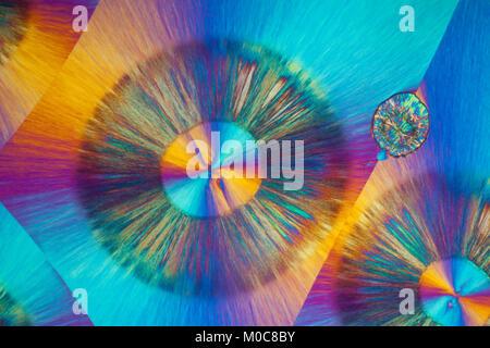 L'acide benzoïque, microphotographie à polarisation croisée, chimiques diapositive fonte fixées.