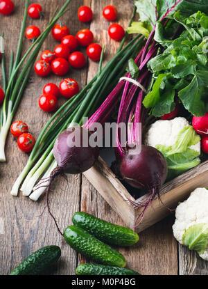 La culture des légumes. La vie encore la récolte. La composition des produits frais bio betteraves, concombres, Banque D'Images
