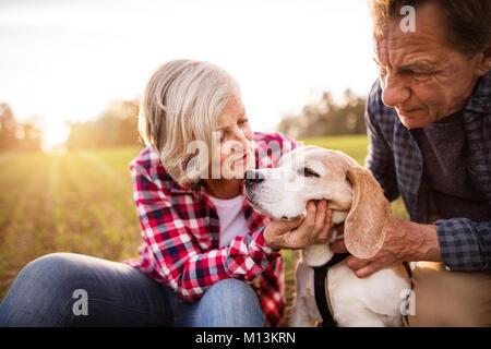 Couple avec chien sur une promenade dans une nature d'automne. Banque D'Images