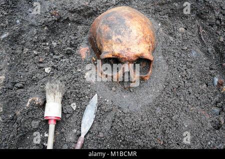Des fouilles archéologiques avec crâne encore à moitié enterrée dans le sol et les outils situés à côté de Banque D'Images
